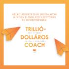 trillio-dollaros-coach-konyv-a-szilicium-volgybol-