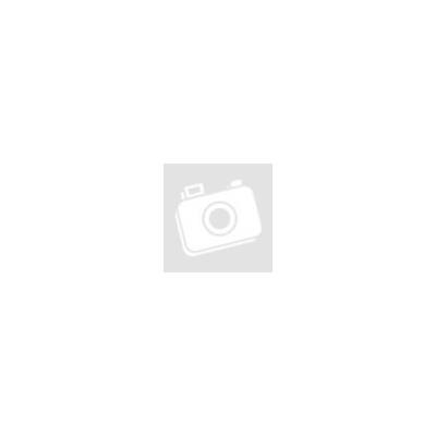 A véletlen zenéje - Paul Auster